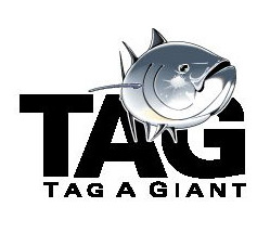 15_small_logo_tag