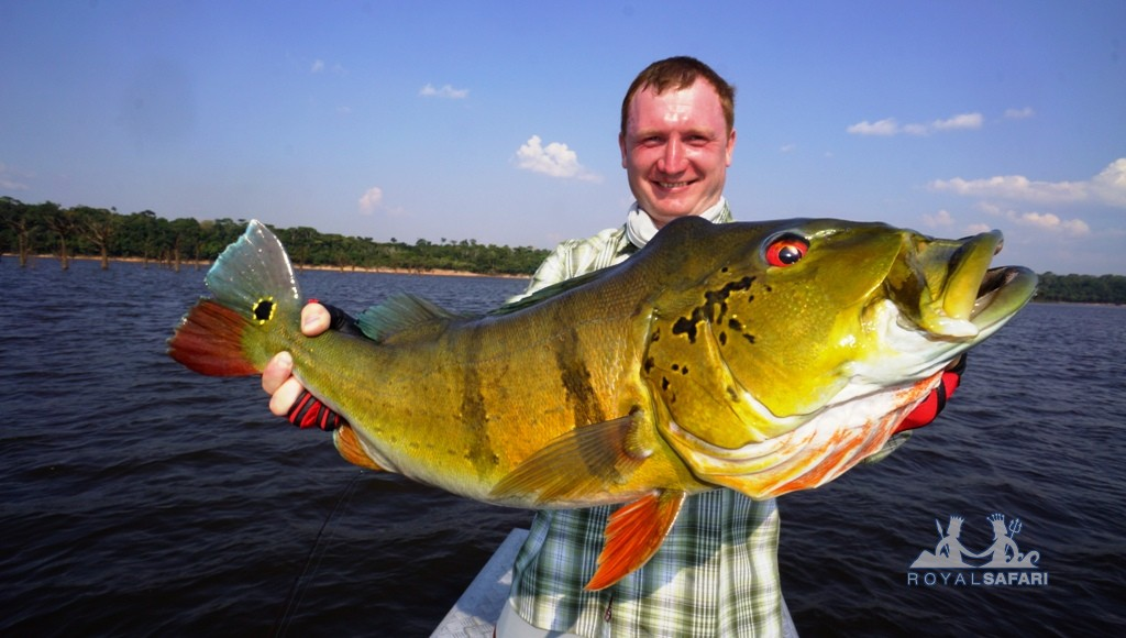 Отчеты о пресноводной рыбалке